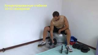 Смотреть онлайн Комплекс упражнений с гантелями дома для мужчин