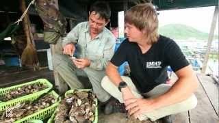 Смотреть онлайн Мир наизнанку: Вьетнам, Нячанг