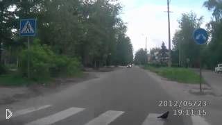 Смотреть онлайн Голубь переходит дорогу по пешеходному переходу