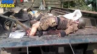 Смотреть онлайн Ополченцы после боя сняли трупы украинских солдат