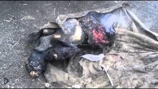 Смотреть онлайн Тела убитых украинских военных в районе Дзержинска