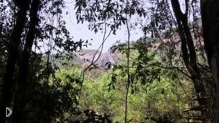 Смотреть онлайн Что посмотреть на экскурсиях в Южном Гоа 2014