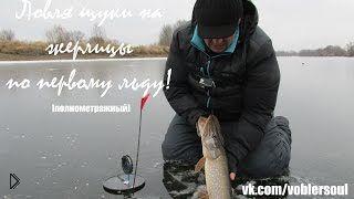 Смотреть онлайн Зимняя рыбалка с жерлицами на щуку