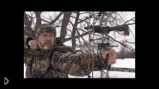 Смотреть онлайн Зимняя охота на кабана с блочным луком и гончей