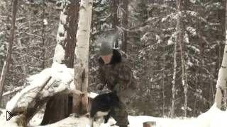 Смотреть онлайн Фильм про настоящую охоту в Тайге