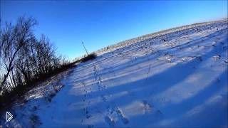 Смотреть онлайн Охота на зайца зимой по снегу с собакой