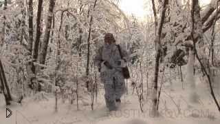 Смотреть онлайн Охота на волков зимой