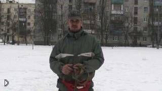 Смотреть онлайн Как научить собаку выполнять команду «Ко мне»