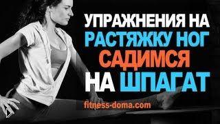 Смотреть онлайн Упражнения для растяжки: как сесть на продольный шпагат