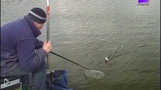 Смотреть онлайн Как ловить рыбу на маховую удочку весной