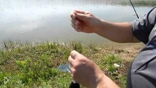 Смотреть онлайн Как и на что ловить толстолобика весной на удочку