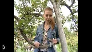 Смотреть онлайн Как правильно прививать фруктовые деревья весной