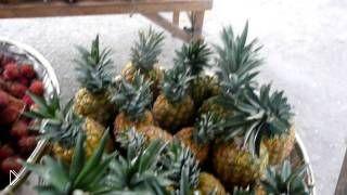 Смотреть онлайн Цены на фрукты, Филиппинские острова