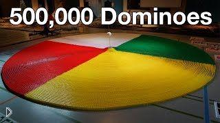 Смотреть онлайн 3 Рекорда Гиннеса на одном чемпионате принципа Домино