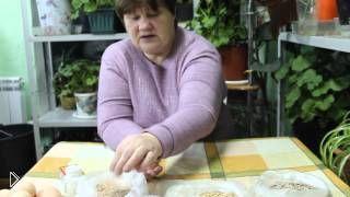 Смотреть онлайн Как правильно кормить кур несушек