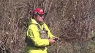 Смотреть онлайн Весенняя ловля щуки в крепких зарослях