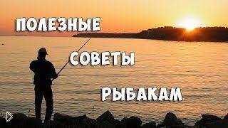 Смотреть онлайн Полезные советы бывалых рыбаков начинающим