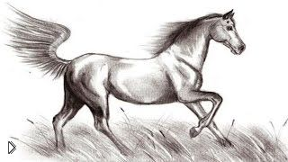 Смотреть онлайн Как нарисовать бегущую лошадь для начинающих