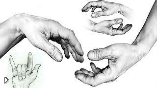 Смотреть онлайн Как поэтапно нарисовать кисти рук карандашом