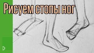 Смотреть онлайн Как нарисовать красивые стопы поэтапно карандашом