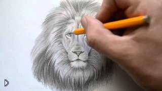 Смотреть онлайн Как поэтапно легко нарисовать голову льва карандашом