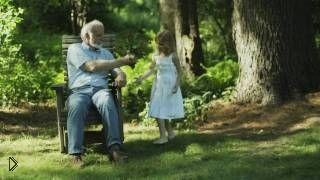 Дедушка с внучкой сажают куст в летнем саду - Видео онлайн