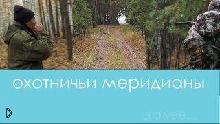 Смотреть онлайн Охота на сибирскую косулю с подхода