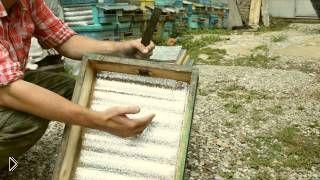 Смотреть онлайн Что необходимо знать и иметь начинающему пчеловоду