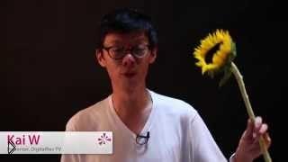 Смотреть онлайн Идея для фото: объятые пламенем цветы