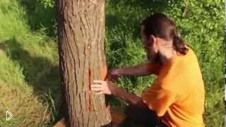 Смотреть онлайн Как сделать улей колоду своими руками