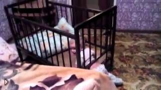 Смотреть онлайн Идеальный побег малыша из кроватки