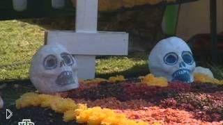 Смотреть онлайн Вся правда о празднике День Мертвых в Мексике