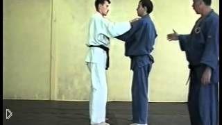 Смотреть онлайн Урок приемов дзюдо для начинающих взрослых