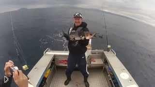 Смотреть онлайн Тунец сильно вибрирует в руках рыбака