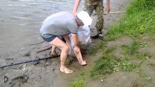 Смотреть онлайн Пьяный в хлам рыбак не может вылезти из воды