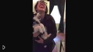 Смотреть онлайн Говорящий щенок хаски, который не умеет выть