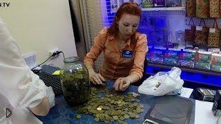 Смотреть онлайн Мужчина купил Айфон за железные монеты