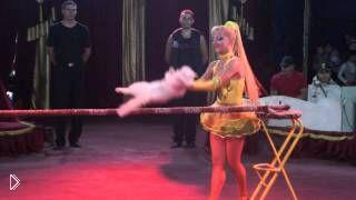 Смотреть онлайн Номер с дрессированными кошками в цирке