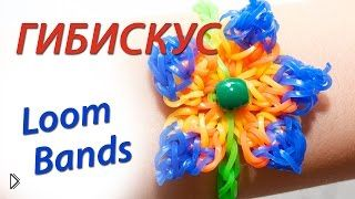 Смотреть онлайн Красивый цветок гибискуса из резинок Loom Bands
