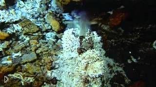 Смотреть онлайн Что скрывается под толщей темных вод мирового океана