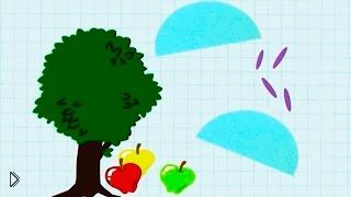 Смотреть онлайн Развивающий мультик: Эдди и Мэдди собирают мандарин