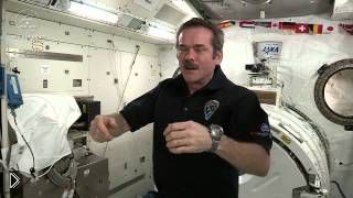 Смотреть онлайн Ответ на вопрос Как спят в космосе