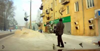 Смотреть онлайн Вредный мужик отпинывает надоедливых голубей