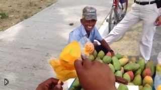 Смотреть онлайн Красивый цветок из манго