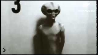 Смотреть онлайн Как выглядят настоящие инопланетяне и пришельцы