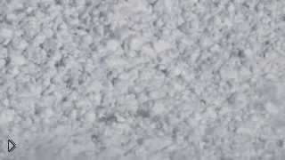 Смотреть онлайн Храбрый заяц выжил перебегая снежную лавину