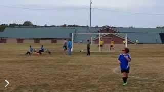 Смотреть онлайн Олень перебегает футбольное поле и забивает гол