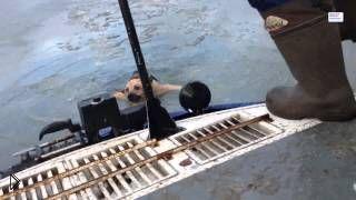 Смотреть онлайн Спасение собаки из замерзшего озера в Ярославле