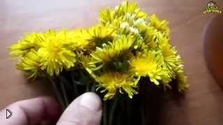 Варенье из одуванчиков и меда без термообработки - Видео онлайн