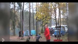 Смотреть онлайн Дерево упало на прямо на убегающего